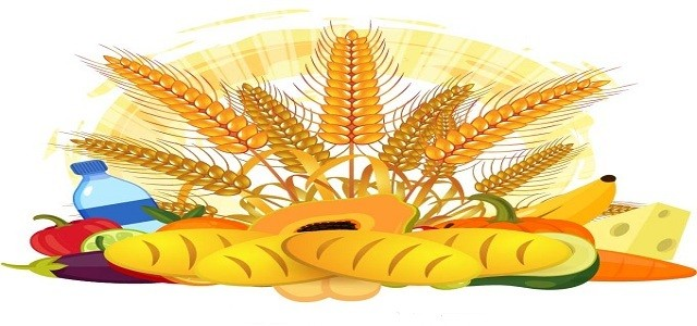 Wheat Protein Market Analysis, Size, Share, Growth, Trends
