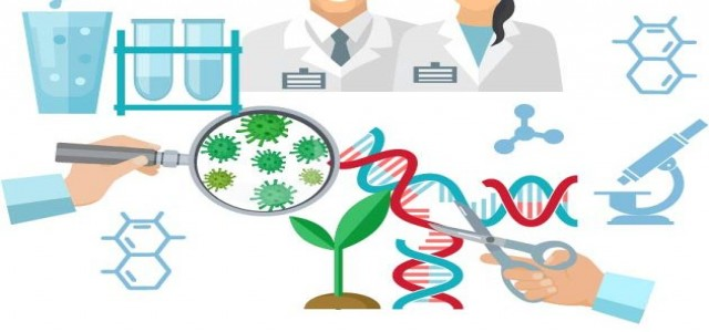 Gene Editing Market outlook with industry review and forecasts